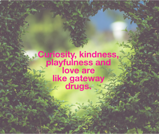 Curiosity, kindness, playfulness and love are like ¨gateway drugs¨ to a deeply satiating sense of fulfillment.