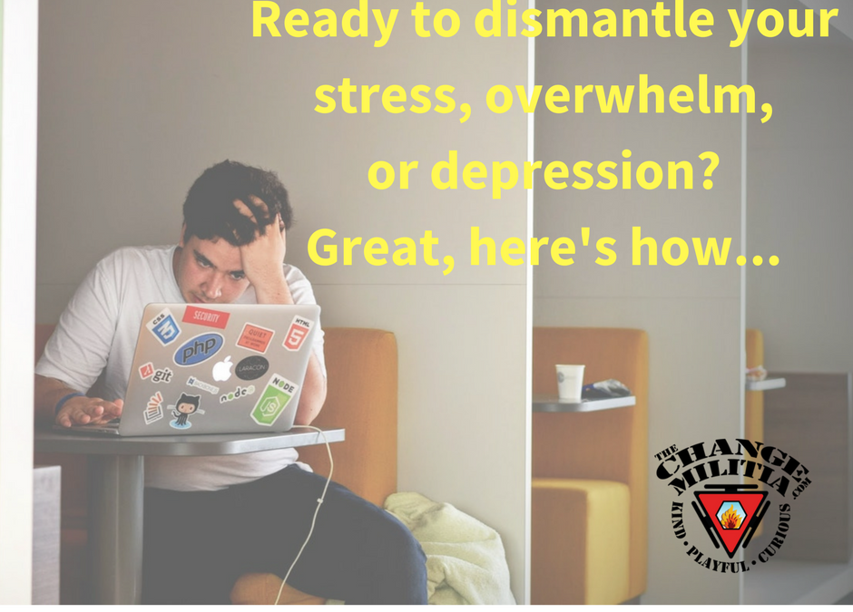 Ready to dismantle your stress, anxiety and overwhelm. Here's how…
